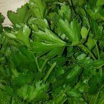 aromatics-herbs02