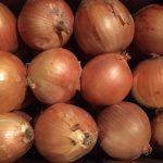 Onions3