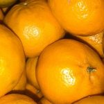 mandarin-06